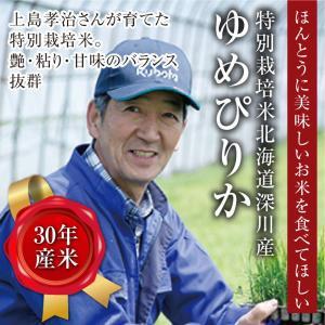 特別栽培米北海道深川産ゆめぴりか10kg(5kg×2)|tokachi-mahoroba