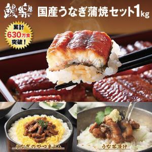 鰻楽のうなぎ蒲焼カット50g×10パック、うなぎ蒲焼キザミ50g×10パックが入った合計1kgの特別...