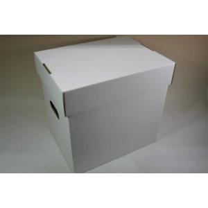 (サプライ) LD・LP保管用(白色)蓋付き強化段ボール箱(未組立)|tokagey
