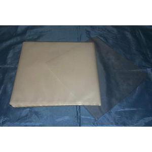 (サプライ) 10インチレコードジャケット保護用 PP袋(透明)100枚 (C30)|tokagey