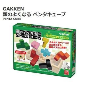 GAKKEN 学研ステイフル 頭のよくなるペンタキューブ 知育玩具 難問パズル 3D 理論思考能力 ...