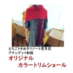プレゼント アテンダント使用 制服 カラートリムショール 見附ニット|tokitetsu-official