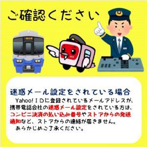 クリアファイルセット トキ鉄車両編 お得な4枚セット|tokitetsu-official|07