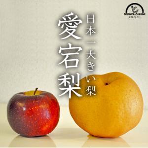 梨2kg 愛宕梨(あたご梨)(送料無料)(ギフト)