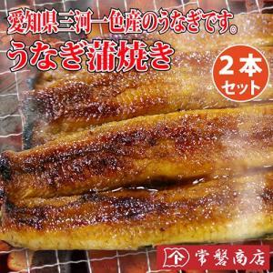 うなぎ蒲焼き 2本セット 鰻|tokiwashouten