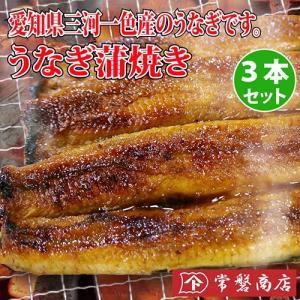 うなぎ蒲焼き 3本セット 鰻|tokiwashouten