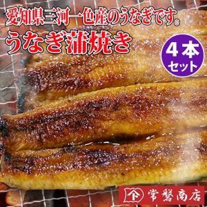 うなぎ蒲焼き 4本セット 鰻|tokiwashouten