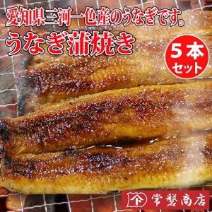うなぎ蒲焼き 5本セット 鰻|tokiwashouten
