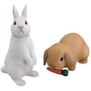 アニア AS-34 ウサギ (日本白色種&ロップイヤー)|tokiwaya
