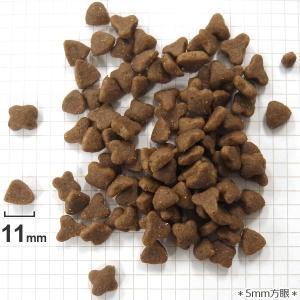 【140】 ロイヤルカナン 猫/ドライ センシブル 15kg 成猫(12か月以上) お腹の健康維持 フィーラインヘルスニュートリション|tokoton-dogfood|04