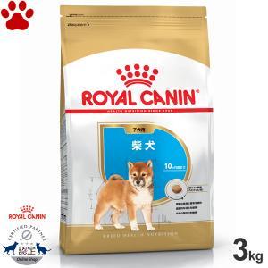 ロイヤルカナン 犬/ドライ 柴犬 子犬用(10か月以下) パピー 3kg ブリードヘルスニュートリション|tokoton-dogfood