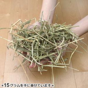 【30】 ハイペット うさぎ用 牧草 パスチャ...の詳細画像5