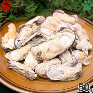 ZEAL フリーズドライ ナチュラルペットトリーツ ワイルドコート ムール貝 50g 無添加 グレインフリー Green Lipped Mussels ジール tokoton-dogfood