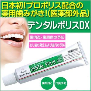 【3個セット】メール便 送料無料 歯肉炎 歯槽膿漏の予防 歯みがき ハミガキ 歯ブラシ /デンタルポリスDX【3個セット】|toku109shop