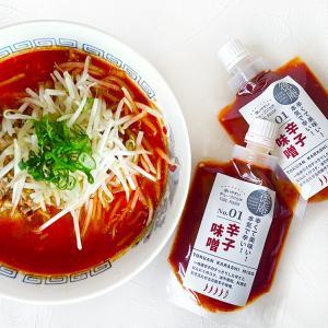 ぽっきり1000円 徳庵辛子味噌 キャップ付スタンドパウチ 150g×2個 メール便 送料無料