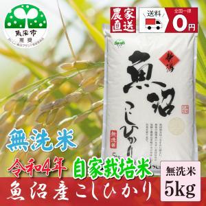 新米 お米5kg 無洗米 29年産 魚沼産コシヒカリ5.0K...