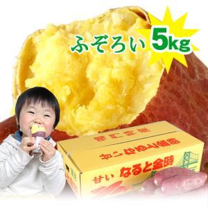 ポイント5倍!送料無料 ふぞろい なると金時 5kg さつまいも 鳴門金時 徳島県産 鳴門産|tokushima-shop