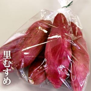 徳島特産 なると金時 里むすめ お試し 袋詰め約1kg さつまいも 鳴門金時 里浦産 徳島県産 国産|tokushima-shop