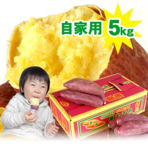 送料無料 なると金時 里むすめ 5kg さつまいも 鳴門市 里浦産 徳島県産 国産|tokushima-shop