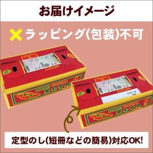 送料無料 なると金時 里むすめ 5kg さつまいも 鳴門市 里浦産 徳島県産 国産|tokushima-shop|04