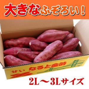 送料無料 ふぞろいのなると金時 2L〜3Lの大きいサイズ 5kg箱入り(徳島県産鳴門金時)|tokushima-shop