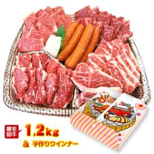 送料無料 特選黒毛和牛の焼肉ハッピーパーティセット1.2kg 4〜5人前 /肉/国産/徳島県産/冷凍便同梱不可/記念日/父の日/母の日/誕生日/内祝い|tokushima-shop
