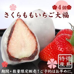 さくらももいちご大福4入(季節限定 徳島佐那河内村の特産高級桃苺)|tokushima-shop