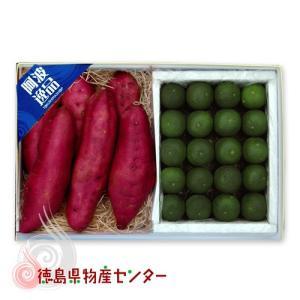 送料無料 徳島の名産直送ギフト3(なると金時 すだち)贈答品 ギフト お歳暮 お中元|tokushima-shop