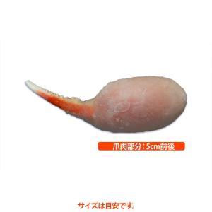 ボイルずわいがに蟹爪(一本爪) 3L 一爪(約25g)|tokushou|02