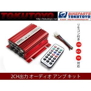 リモコン付き 2CH出力 オーディオ アンプ (USB/RCA/FM対応) 赤 TOKUTOYO(トクトヨ)(クーポン配布中)|tokutoyo