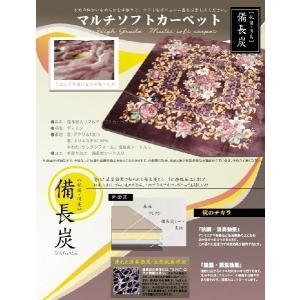 備長炭シート入り マルチソフト カーペット ディオンII 長方形 200×250cm|tokuyama