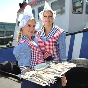 オランダ王室御用達とろニシンの塩漬け Premium CROWN MAATJES / 2パック  ※沖縄除く全国配送|tokyobishoku|03