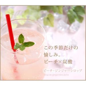銀座のジンジャー 春夏限定3本セット ギフトボックス入 ドライ&柚子&ピーチ ×6箱|tokyobishoku|04