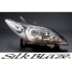 SilkBlaze シルクブレイズ【エリシオンRR前期】アイラインフィルム tokyocar