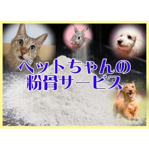 ペットちゃんの御遺骨粉骨サービス|手元供養や散骨に