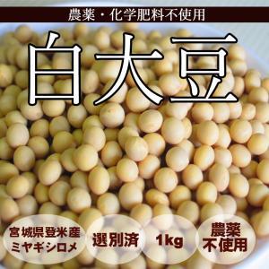 GWは5/3〜5/6までお休み【予約開始】2月上旬より発送予定白大豆 (1kg) 農薬・化学肥料不使用|tomerice
