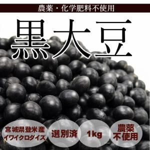 黒大豆 (1kg) 農薬・化学肥料不使用|tomerice