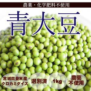 【予約開始】2月上旬より発送予定青大豆 (1kg) 農薬・化学肥料不使用 tomerice