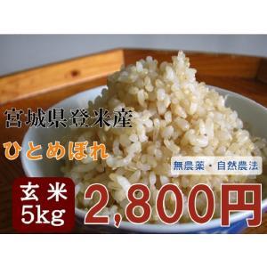 ひとめぼれ 5kg 玄米 29年 宮城 登米 米 特別栽培米 農薬・化学肥料不使用|tomerice