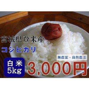 コシヒカリ 5kg 白米 29年 宮城 登米 米 特別栽培米 農薬・化学肥料不使用|tomerice