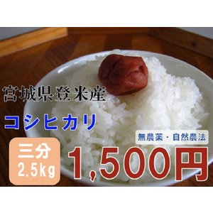 コシヒカリ 2.5kg 三分米 29年 宮城 登米 米 特別栽培米 農薬・化学肥料不使用|tomerice