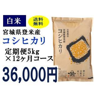 定期便12ヶ月コース:コシヒカリ白米5kg 宮城県登米産|tomerice