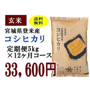 定期便12ヶ月コース:コシヒカリ玄米5kg 宮城県登米産|tomerice
