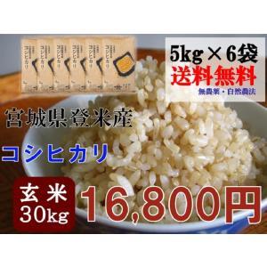 コシヒカリ 30kg (5kg×6袋) 玄米 送料無料 29年 宮城 登米 米 特別栽培米 農薬・化学肥料不使用|tomerice