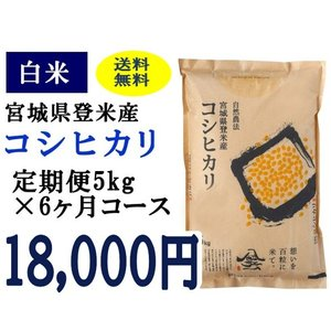 定期便6ヶ月コース:コシヒカリ白米5kg 宮城県登米産|tomerice