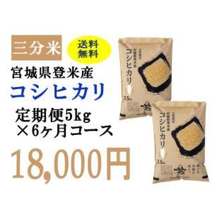 定期便6ヶ月コース:コシヒカリ三分5kg 宮城県登米産|tomerice