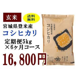 定期便6ヶ月コース:コシヒカリ玄米5kg 宮城県登米産|tomerice