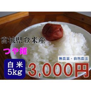 新米 30年産 つや姫 5kg 白米  宮城 登米 米 特別栽培米 農薬・化学肥料不使用|tomerice