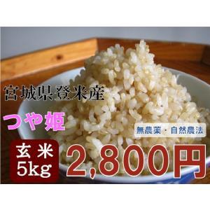 新米 30年産 つや姫 5kg 玄米  宮城 登米 米 特別栽培米 農薬・化学肥料不使用|tomerice