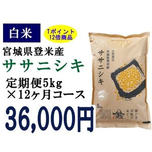 定期便12ヶ月コース:ササニシキ白米5kg 宮城県登米産|tomerice